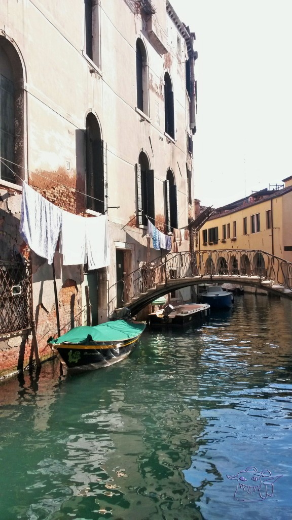 Venice, canal, water, mould, decay, Italy