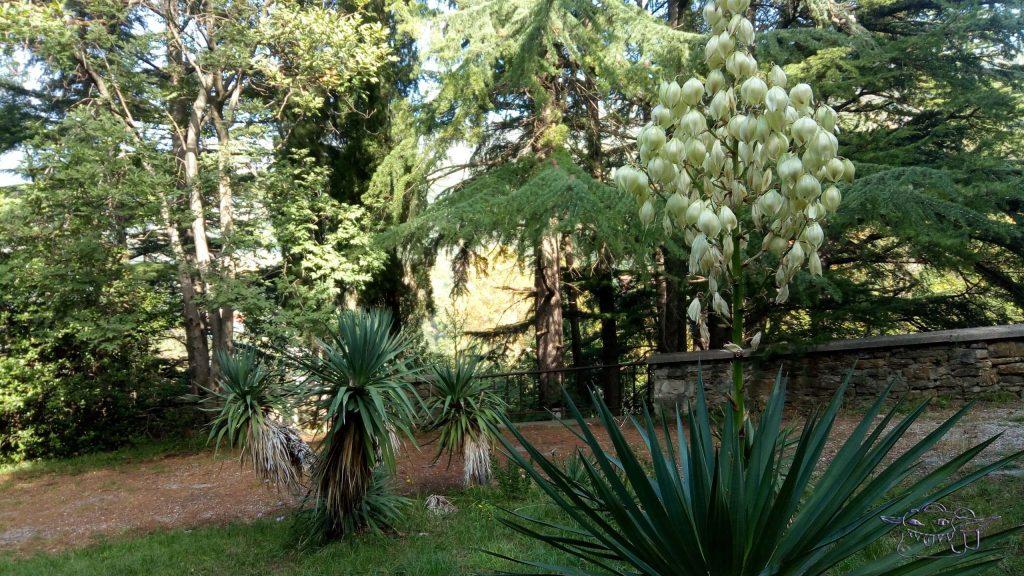 Miramare, gardens, castle, Italy, trieste, travel
