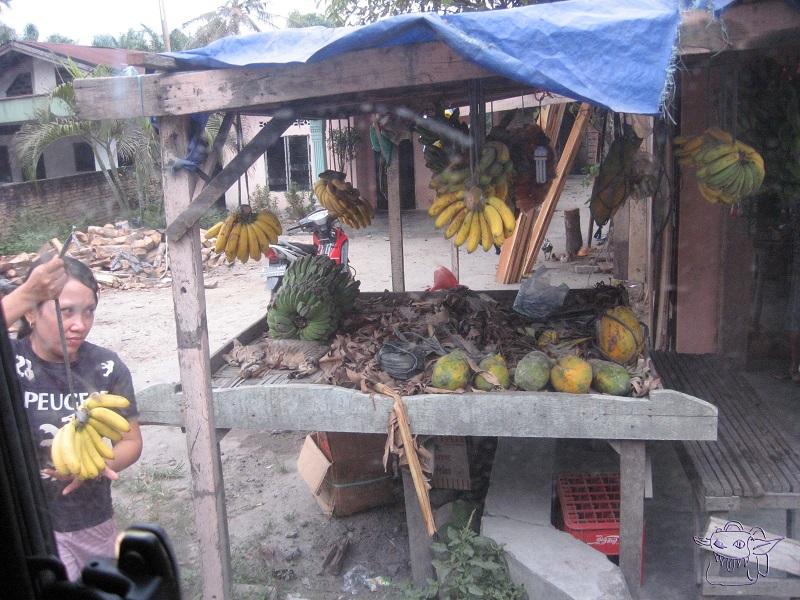 bananas, market, Sumatra
