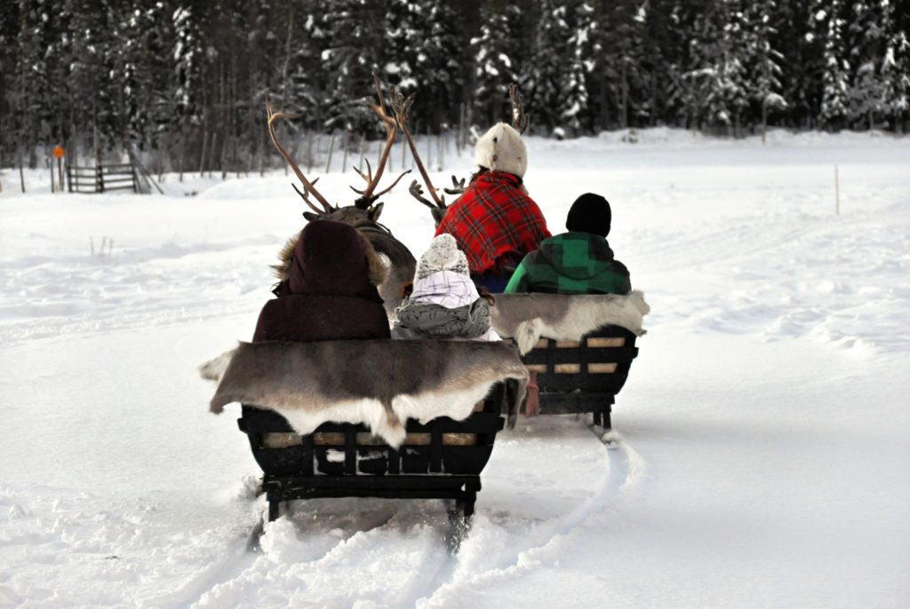 kids on a reindeer sleigh ride